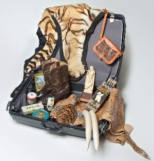 Suitcase-for-Survival_04_16_2014