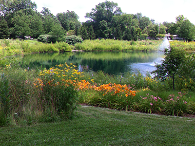 Flowers and pond feature